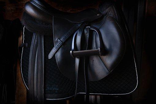 Quels sont les différents types de tapis de selle pour cheval?